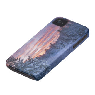 Vivid sunset paints the sky above wintery Case-Mate iPhone 4 case