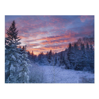 Vivid sunset paints the sky above wintery postcard