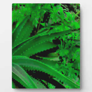 Vivid Tropical Design Plaque