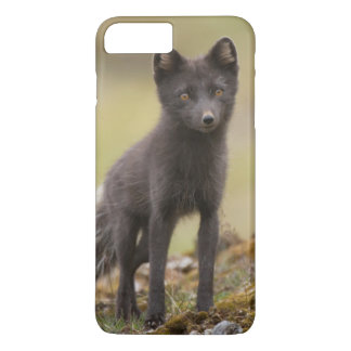 Vixen searches for food iPhone 7 plus case