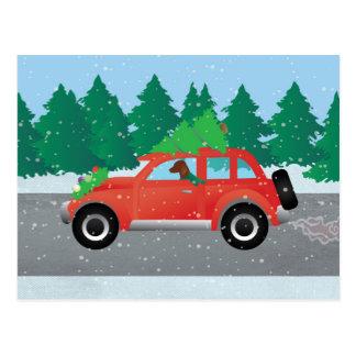 Vizsla Dog Driving a Christmas Car Postcard