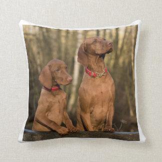 vizsla group cushion
