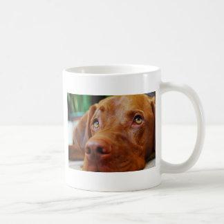 VIZSLA - mug