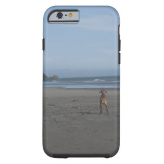 Vizsla on beach phone case
