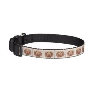 Vizsla Pet Collar