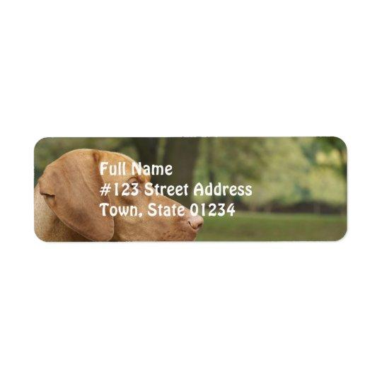 Vizsla Puppy Return Address Label