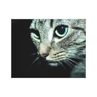 Void Cat Canvas Print