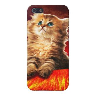 volcano cat ,vulcan cat , iPhone 5 covers
