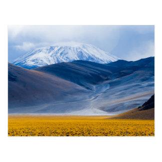 Volcano Incahuasi, Argentina Postcard
