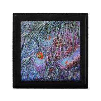 volcano orange peacock feathers gift box