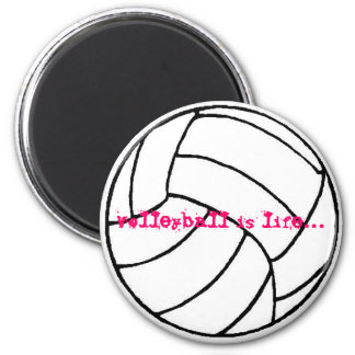 volleyball mag. magnet