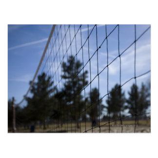 Volleyball net postcard