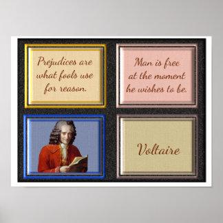Voltaire Quotes -- Art Print