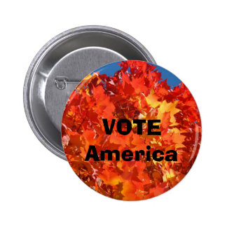 VOTE America buttons Elections Political custom