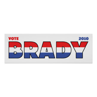 Vote Brady 2010 Elections Red White and Blue Print