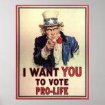 Vote Pro-Life Poster