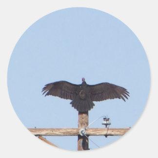 Vulture Ceremonial Round Sticker