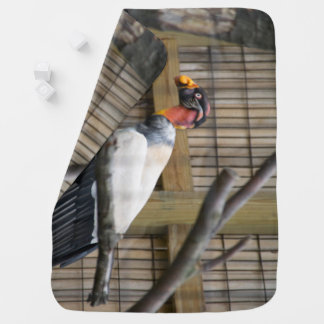 Vulture Photography Baby Blanket