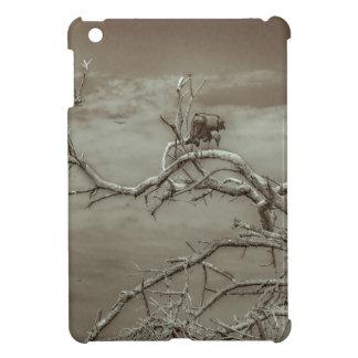 Vultures at Top of Leaveless Tree iPad Mini Cases
