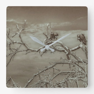 Vultures at Top of Leaveless Tree Square Wall Clock