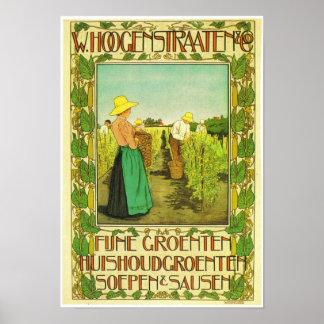 W. Hoogstraaten &  Co. Poster