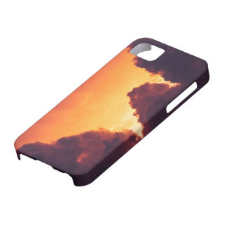 w in weather case for the iPhone 5