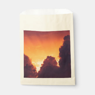 w in weather favour bag