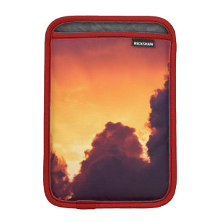 w in weather iPad mini sleeve