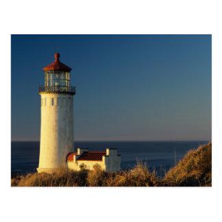 WA, Cape Disappointment State Park, North Head Postcard
