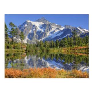 WA, Heather Meadows Recreation Area, Mt. Postcard