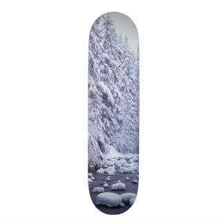 WA, Mount Baker-Snoqualmie National Forest, 19.7 Cm Skateboard Deck