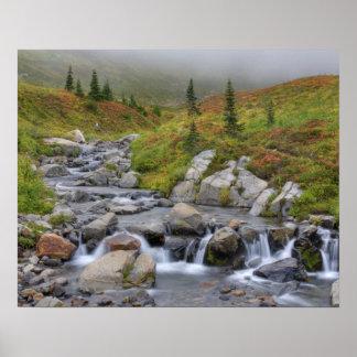 WA, Mt. Rainier National Park, Edith Creek Poster