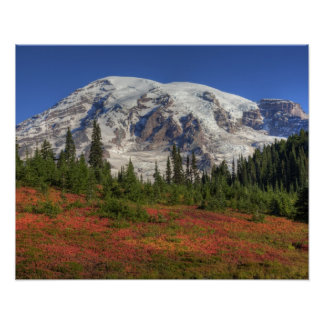 WA, Mt. Rainier National Park, Paradise Valley Poster