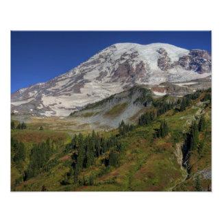 WA, Mt. Rainier National Park, view from the Poster