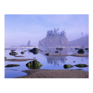 WA, Olympic National Park, Second Beach, Postcard