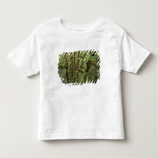 WA, Olympic NP, Hoh Rain Forest, Hall of Tee Shirts