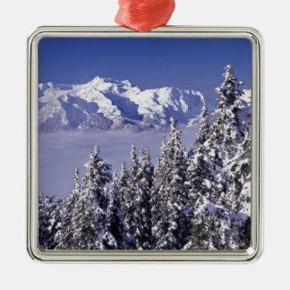 WA, Olympic NP, Olympic Mountain Range, view Metal Ornament