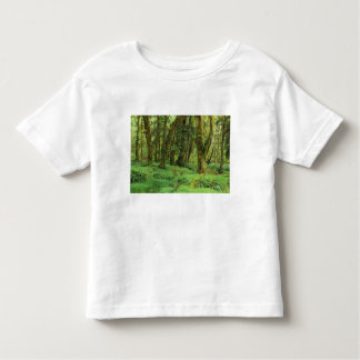 WA, Olympic NP, Quinault Rain Forest, moss Shirt