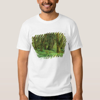 WA, Olympic NP, Quinault Rain Forest, moss Tshirts