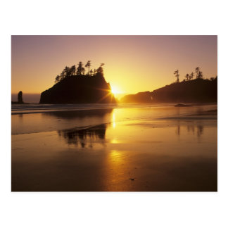 WA, Olympic NP, Second Beach at sunset Postcard