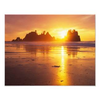 WA, Olympic NP, Shi Shi beach at sunset, Point Art Photo