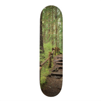 WA, Olympic NP, Sol Duc Valley, rainforest 21.6 Cm Skateboard Deck