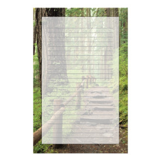 WA, Olympic NP, Sol Duc Valley, rainforest Personalized Stationery