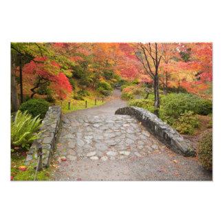 WA, Seattle, Washington Park Arboretum, Photo Print