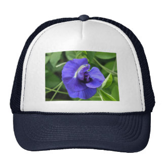 wabbly woo tu hat