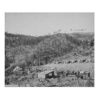 Wade and Jones Railroad Camp in Whitewood Canyon Poster