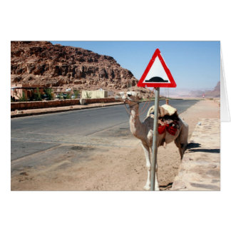 wadi rum camel stop card