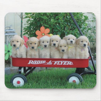 Wagon Pups Mousepad