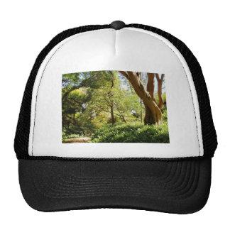 Wahiawa Botanical Garden Trucker Hat