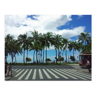Waikiki Beach Hawaii Postcard